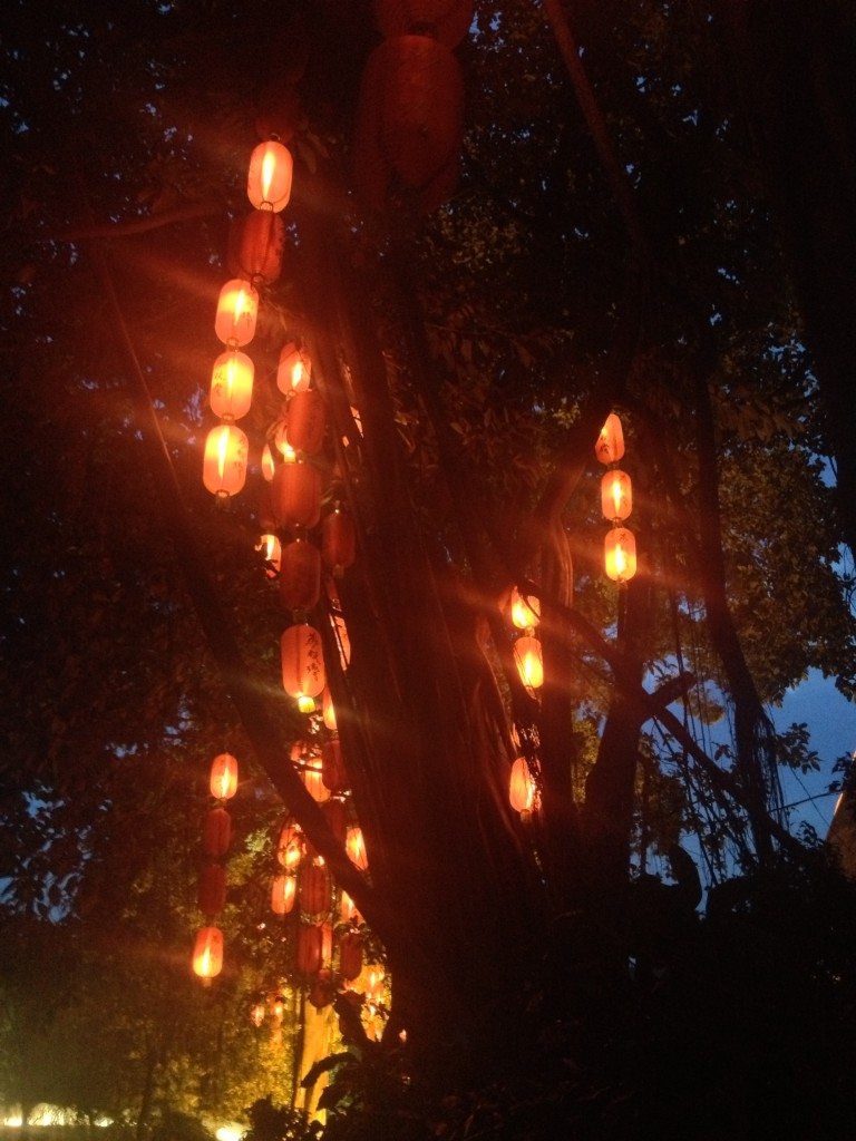 荔湾河涌-紅燈籠