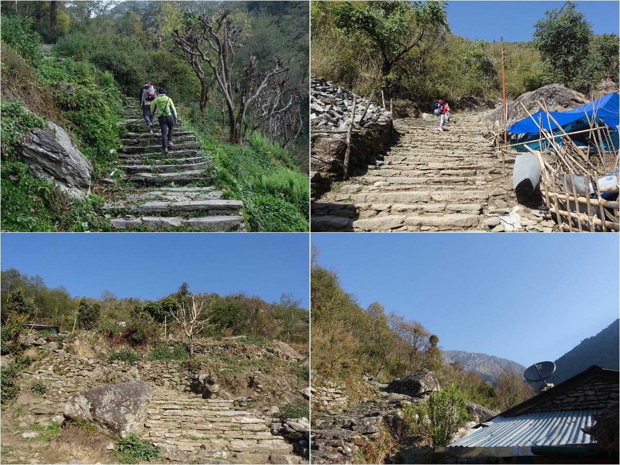 尼泊爾trekking